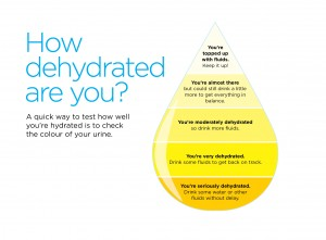 Hydration_FINAL